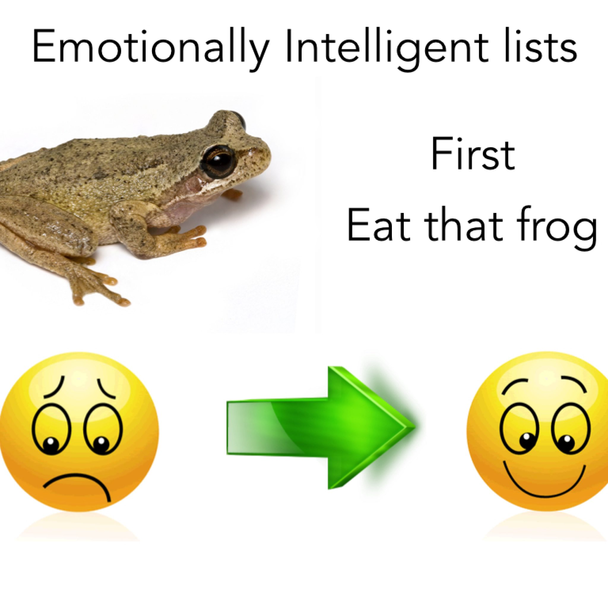 Frog lists for effective time management for Frog consulting
