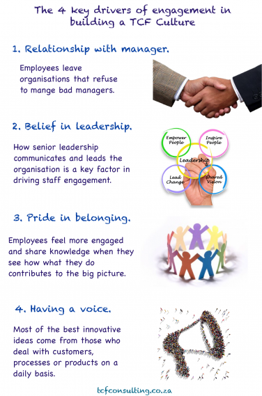 The 4 key drivers of engagement in building a TCF Culture infographic