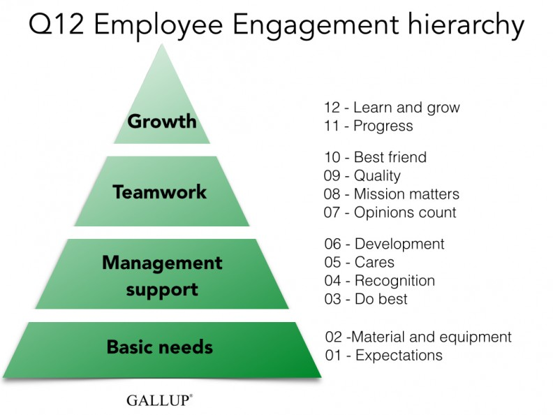 Employee Engagement Gallup Q12