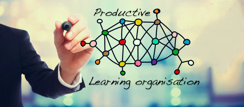 Building a productive learning organisation